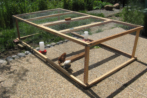 Need to solve problems how to build chicken coop cheapest for Easy way to build a chicken coop